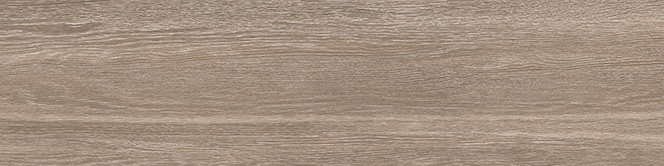 Wood Touch Brown 30x120
